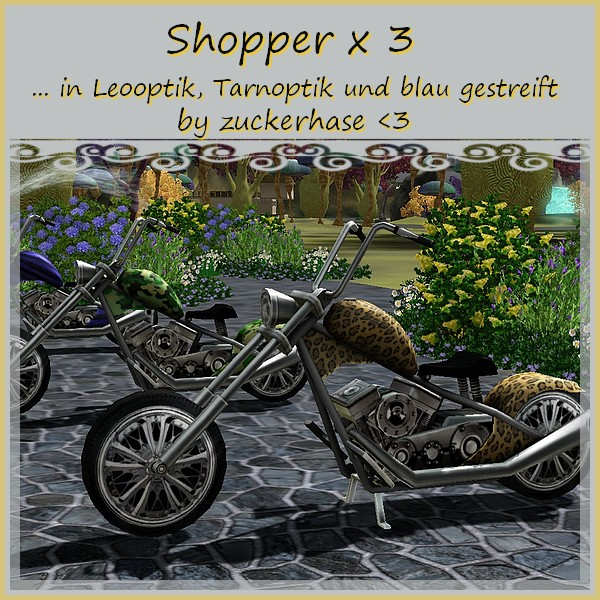 Shopper01